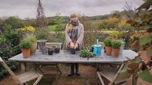 churchill insurance u2013 winter gardening tips lighting cameraman