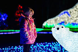 wild lights check out these holiday zoo events near you trip