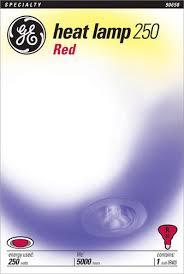 ge 250 watt red heat lamp light bulb at menards