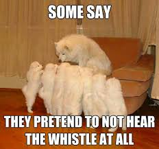 Whistle Meme - best of the storytelling dog meme smosh