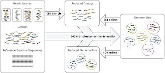 a probabilistic model to recover individual genomes from