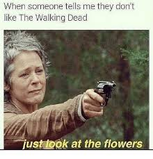 Look At The Flowers Meme - when someone tells me they don t like the walking dead just look at