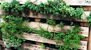 Garden Pallet Ideas Vertical Vegetable Garden Ideas