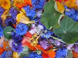 edible blue flowers eat your flowers 10 easy to grow edible flowers the carrot revolution