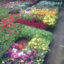 Garden Supplies Orta Gardening Supplies 11 Reviews Nurseries U0026 Gardening