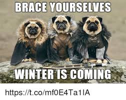 Memes About Winter - brace yourselves winter is coming httpstcomf0e4ta1ia brace
