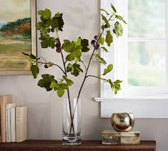 Branches In A Vase Fig Branch Pottery Barn