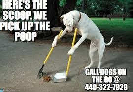 Poop Meme - here s the scoop we pick up the poop dog poop meme on memegen