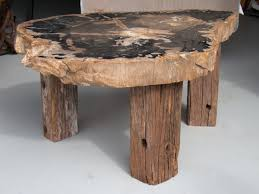 diy petrified wood coffee table u2014 the wooden houses