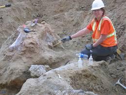 mammoth bones san diego