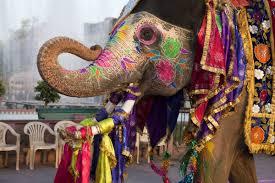 consolato india india in travel it new generation travel agency