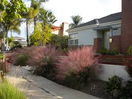 decorating awesome front gate with pink muhly grass and walkway ideas