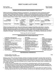 Executive Resumes Templates Executive Resumes Templates Director Of Project Development