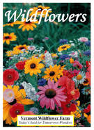 wildflower seed packets standard seed packets