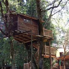 cool tree houses 7 cool treehouses that prove you never have to grow up trover blog