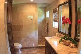 walk in showers no doors bathroom traditional with coastal style