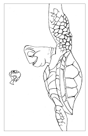 kids fun 15 coloring pages finding nemo