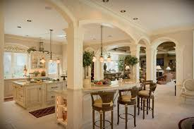 Kitchen And Living Room Designs Kitchen Wonderful Classic Open Kitchen With Arched Ceiling And