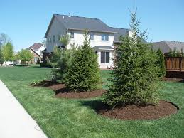 Landscaping Tree Ideas To Create A Fetching Garden Design With