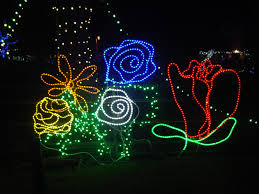 Zoo Lights Az by Tucson Daily Photo December 2015