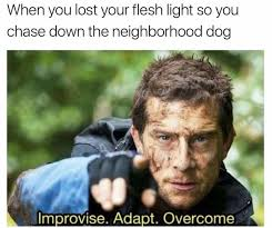 Lost Memes - when you lost your flesh light so you chase down the neighborhood