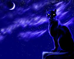 black cat moon at wallpapers and images wallpapers pictures