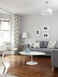 Grey Brown Living Room Houzz - Light colored living rooms