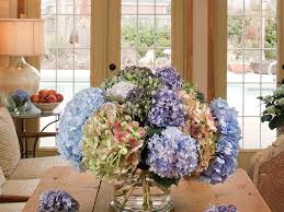 Dried Hydrangeas The Secret To Drying Hydrangeas And Other Botanicals Southern Living