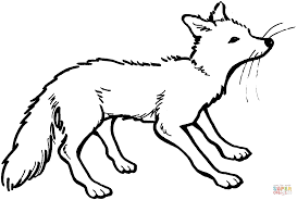 vixen coloring page free printable coloring pages