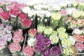 Flowers Wholesale Bulk Suppliers Of Flowers Also Seeing Upside In Retail Trade Sme