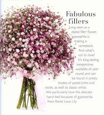 Vases For Bridesmaid Bouquets Best 25 Gypsophila Bouquet Ideas On Pinterest Gypsophila