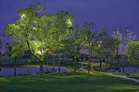 Lentz Landscape Lighting On The Bluebonnet Trail Ennis