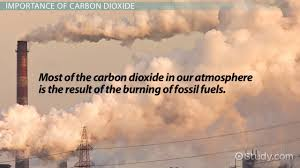 What Is The Most Important Requirement For All Living Things by What Is Carbon Dioxide Definition U0026 Explanation