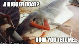 Jaws Meme - now you tell me imgflip