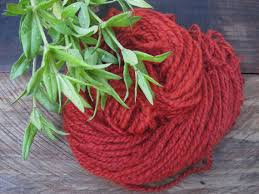 madder seed rubia tinctorum rose madder red dye by ecotonethreads