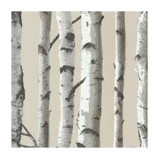 shop provincial wallcoverings 2532 20418 irvin grey birch tree