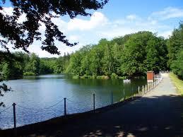 Baden Im Harz Bremer Teich U2013 Wikipedia