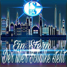 schalke sprüche 569 best logos schalke images on searching