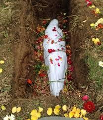 casket companies burial do not buy me a casket casket companies are