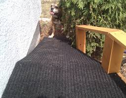 wild man farm blog archive how to build a dog ramp