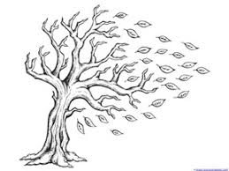 tree coloring picture oak tree pine tree coloring page tree
