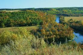 North Dakota forest images Walhalla nd jpg