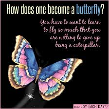 Meaningful Butterfly - how does one become a butterfly butterflies papillons
