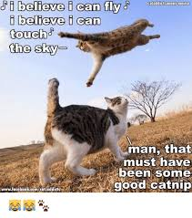 I Believe I Can Fly Meme - ji believe i can fly cataddicisanony amouse i believe i can touch