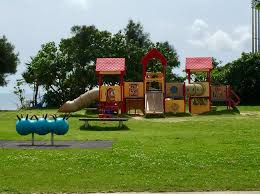 246 best okinawa parks playgrounds images on