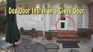 Pet Door For Patio Door by Impressive Doggy Door In French Doors Pet Door Installation