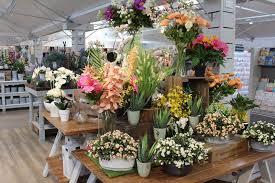 indoor plant display ruxley manor garden centre indoor plants sidcup kent