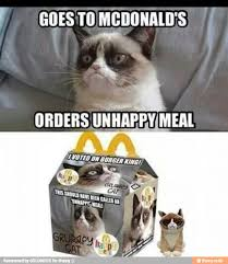 Unhappy Meme - 30 very funny grumpy cat meme pictures and photos