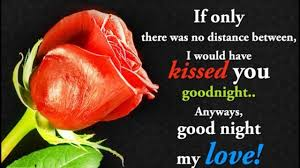 Love Good Night Quotes by Good Night Video Flower Sms Good Night My Lovegood Night Msg Good