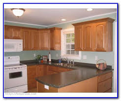 paint color ideas for old kitchen cabinets painting home